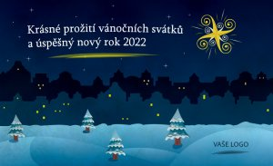Noční krajina s vánoční hvězdou